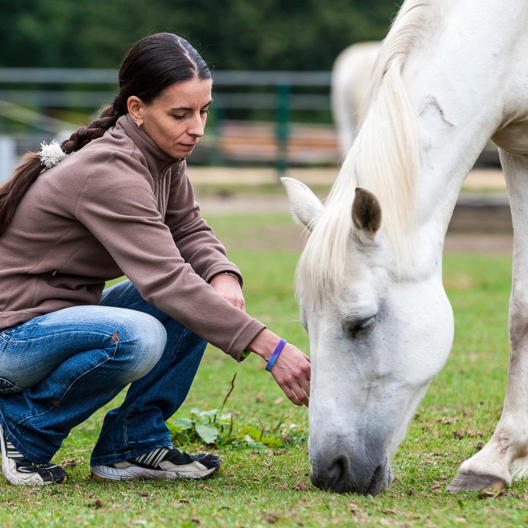 Pferde helfen dir, dich selbst zu spüren