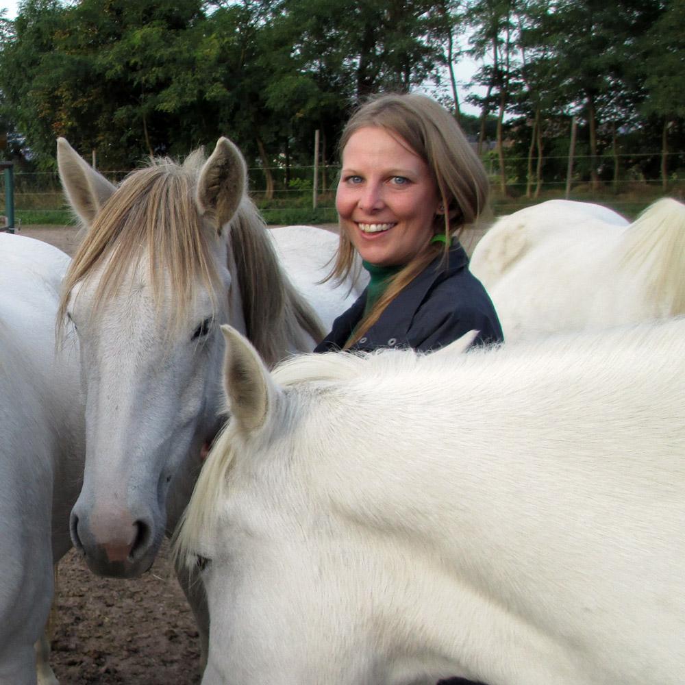 Folge deiner Freude - die Heldenreise mit Pferden stärkt deine Lebendigkeit