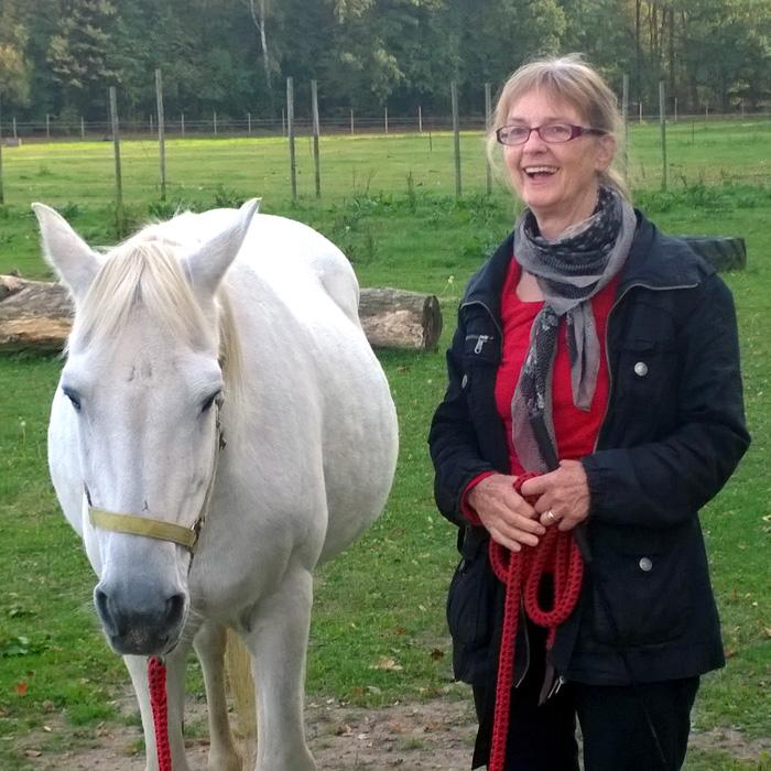 Lebendiges Lernen mit Pferden