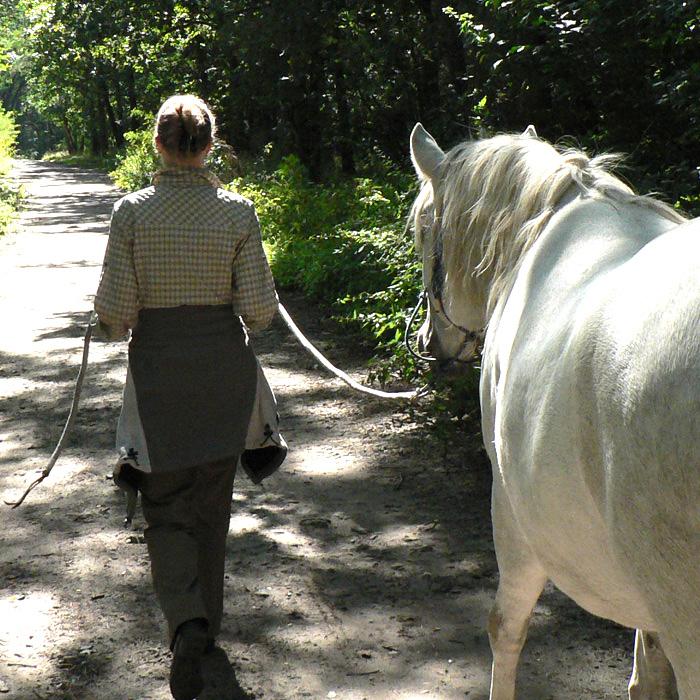 Wahre Einheit mit dir selbst, den Pferden und der Natur erleben