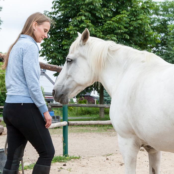 Pferde suchen Verbindung und spüren genau, wie es dir geht
