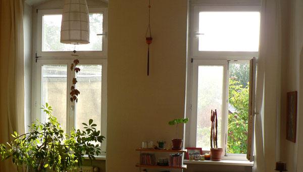 Natur vor dem Fenster
