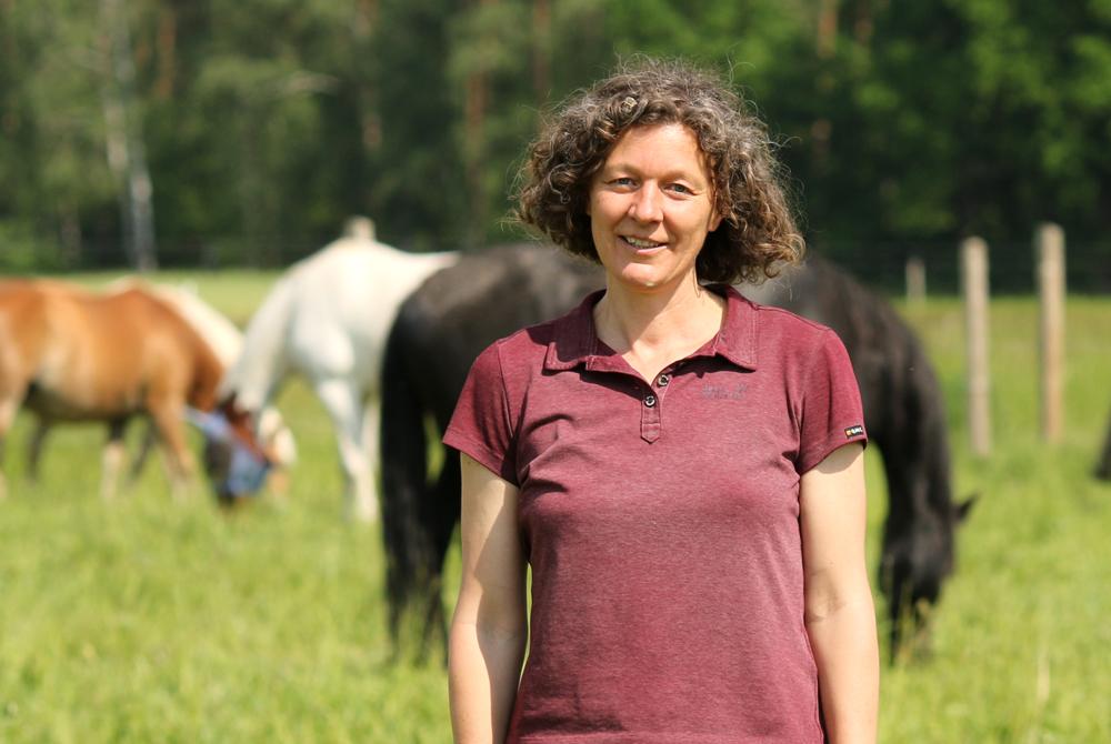 Was ist pferdegestütztes Coaching?